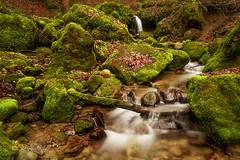 Romantischer Bachlauf / Romantic creek (Claudia Bacher Photography) Tags: wasser water bach creek moos moss schweiz suisse switzerland sonya7r langzeitbelichtung longexposure natur nature outdoor