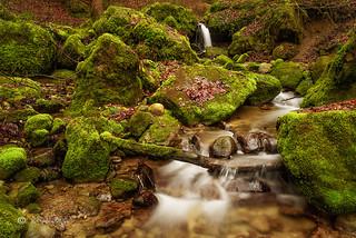 Romantischer Bachlauf / Romantic creek
