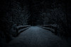 Into the abyss (RASMUS BORGUDD) Tags: nature light mysterious woods darkness darkdays tyresta sthlm nationalpark