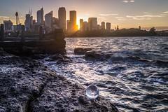 If cities laid eggs (Rakuli) Tags: ifttt 500px sydney city egg bubble glass globe ball twilight golden sunset harbour australia waves water night
