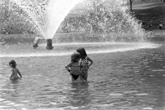 060568 08 (ndpa / s. lundeen, archivist) Tags: nick dewolf nickdewolf photographbynickdewolf blackwhite bw 1968 1960s 35mm june beaconhill candid boston massachusetts ma city citylife streetlife sliceoflife film monochrome blackandwhite spring people park common bostoncommon pond wadingpool frogpond water fountain wading children kids child girl nicole pagecollingwood collingwood