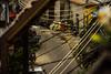 (mcs.moisesfilho) Tags: brasil brazil vidigal grafitti grafite cores favela arte morro comunidade colors colorful house casa dois irmãos mototaxi avrão mirante vidiga nós do cultura black turista turístico tour guide guia