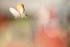 Flower Fairy (justinalouise) Tags: secretgarden bokeh girl macro flower pink flowerfairy