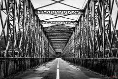 Road to the Unknown (_Hadock_) Tags: bridge bw black white bn blanco y negro iron steel huesca zaragoza teruel aragon puente road old carretera infierno futuro creative commons comons ullhd wallpaper fondo de pantalla screensaver desktop nikon tamron 2470