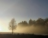 Winter 2016 (Tobi_2008) Tags: bäume trees landschaft landscape natur nature himmel sky ciel nebel fog hessen deutschland germany allemagne germania platinumheartaward