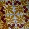 masó (5) (canecrabe) Tags: marron marronnier feuille bogue carreau carrelage ciment masó fondation maison gérone catalogne