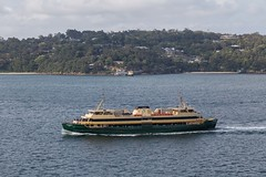 MV Narrabeen passing Taronga Zoo Wharf (deanoj305) Tags: pottspoint newsouthwales australia au mv narrabeen sydney ferries