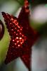 ECS_0994 (Deepak Kaw) Tags: corner macromondays macro color composition contrast bokeh christmas festival festive nikon tamron