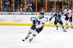 "Missouri Mavericks vs. Wichita Thunder, January 7, 2017, Silverstein Eye Centers Arena, Independence, Missouri.  Photo: John Howe / Howe Creative Photography • <a style=""font-size:0.8em;"" href=""http://www.flickr.com/photos/134016632@N02/32099456732/"" target=""_blank"">View on Flickr</a>"