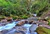 Chuvejé (Serge Saint) Tags: bosque campamento cascadas ecoturismo querétaro rio sierragorda ecología pinaldeamoles jalpandelasierra mexicodesconocido longexposure river adventure aventura bosqueecoturismoin senderismo hiking