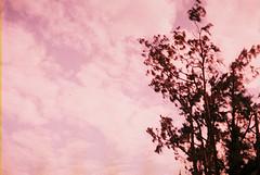 F1030017_lr (chi.ilpleut) Tags: kinmen taiwan island quemoy 2017 chinesenewyear lunar film expiredfilm kodakelitechrome100 iso100 crossprocessing 135mm 35mm analogue ilovefilms kodakfilm 底片 過期底片 柯達 記憶 蹤跡 金門鎏金之島kinmen 台灣 海島 島嶼 外島 回憶 走春 大晴天拍照天 晃晃 隨拍 我不在,就在去海邊的路上 海景 outing 冬陽 暖暖 暖陽 思念 漫步