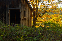 Sunshine by the Old Barn (SunnyDazzled) Tags: abandoned barn wooden bankbarn newjersey farm rural field pasture sunlight autumn warm october sunshine shade shadow contrast hills delawarewatergap dwg