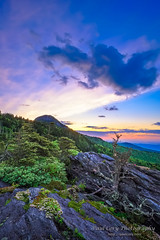 Sunrise, Grandfather Mountain (Paul Cory) Tags: lighting camera sky mountains flower tree nature clouds forest season lens landscape dawn spring unitedstates availablelight northcarolina naturallight bluesky boulder event grandfathermountain postprocessing westernnorthcarolina fujicamera timeofday naturalfeature niksoftware grandfathermountainnaturephotographyweekend viveza2 iridientdeveloper zeisstouit12mmf28 fujixe2 zeisstouitlens 2015grandfathermountainnaturephotographyweekend