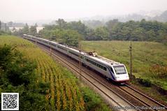 SBB_ETR470_Camnago_09ottobre2013 (treni_e_dintorni) Tags: train ec treni eurocity cisalpino sbbcffffs etr470 camnago trenidintorni treniedintorni