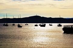 bfds procê (Ruby Ferreira ®) Tags: sunset boats bay barcos silhouettes hills pôrdosol baía silhuetas florianópolissc