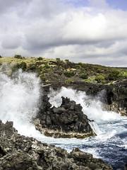 Hawaii-1504