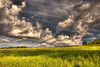 Moving clouds (* landscape photographer *) Tags: italy green nature field clouds europe flickr nuvole valle natura valley campo nikkor lucania 2015 nikond90 landscapephotographer sinni salvyitaly sanbiasefrancavillainsinni
