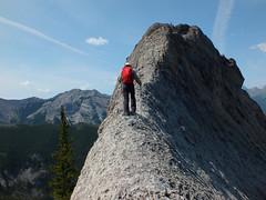Porcupine Ridge Summit Scramble - Larry thinks he can summit this pinnacle (benlarhome) Tags: canada mountains trekking trek kananaskis rockies hiking path hike trail alberta rockymountain scramble canadianrockies porcupineridge gününeniyisithebestofday