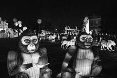Gorillaz (NVOXVII) Tags: lanterns lights festival creative blackandwhite bw monotone contrast creation longleat nikon gorilla lightanddark glowing