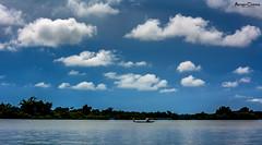 The Sailor (animeshchanda) Tags: river landscape watercsape assam clouds india nature chatla northeast