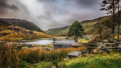 Serene (Einir Wyn) Tags: serene colourful picture landscape light lake love cwmorthin beautiful trees wales snowdonianationalpark remote uk water sky colour color clouds cottage quarry nature natural green nikon outdoor mountain industry