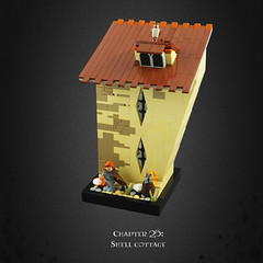Harry Potter and the Deathly Hallows 17 – Shell Cottage (Umm, Who?) Tags: lego harry potter deathly hallows jk rowling warner brothers ron hermione britain magic chapter 25 shell cottage lupin sea bill fleur owl