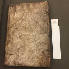 Binding from Bryn Mawr College Library fG-521 (Provenance Online Project) Tags: brynmawrcollegelibraryfg521 brynmawrcollegelibrary specialcollections guaineriusantonius venice 1498 locatellibonetoactive14861523 binding