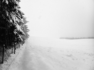 La piste des trappeurs (Le Ché, Cantal, 20 décembre 2016)