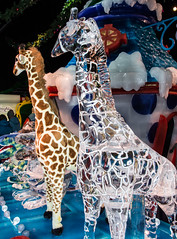 Ice Sculpture Modeled After a Large Plush Giraffe (scattered1) Tags: blueparka 2016 christmas christmasaroundtheworld christmasonthepotomac dc gaylordnationalresortconventioncenter md maryland nationalharbor potomac sculpture washington xmas art cold event featuringchristmasaroundtheworld frozen giraffe holiday ice toy whimsical winter