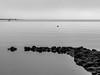 P1020551 (stefanh.varberg) Tags: balgö balgöbrygga gx8 lumix brygga hav kallt klippor pir sten stenar stilla vinter
