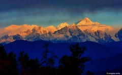 Golden Kanchenjunga from Sillery Gaon (Sougata2013) Tags: sillerygaon darjeeling westbengal india himalayanrange kanchenjungarange kanchenjunga sunrise landscape nature nikond7200