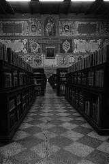 Dark Bologna - Lucio Dalla (vale3vale) Tags: bologna piazzagrande sanpetronio montagnola emiliaromagna viapiella torredegliasinelli