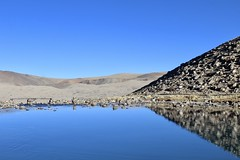 Gurudongmar lake from yet another angle. (atulgoyalmaverick) Tags: incredibleindia northeastindia sikkim glaciallake landscape lake highaltitude