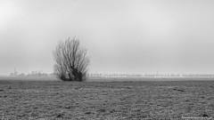 Op één of andere manier is het Groningse platteland van uitzonderlijke schoonheid in monochrome.  #mooigrunnen #groningerlandschap (Remco van der Tuin) Tags: groningen 50mm pentax k5 zwartwit reitdiep