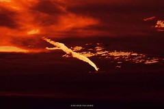 PHOTO PREMIUM - SELO TOP CLICK #bestpicture #cloudhunters #clouds #casacor #crepusculo #decora #decoracao #decorar #decoracaodeinteriores #decorcasa #livingroom #lighting #moldura #molduras #nuvensquefalam #pictureoftheday #photooftheday #poster #posterar (helderpalermo) Tags: casacor lighting selotopclick sol nuvensquefalam clouds decora pictureoftheday quadrosdecorativos quadros decoracao cloudhunters molduras sala bestpicture posters crepusculo decorcasa poster decoracaodeinteriores posterartr livingroom photooftheday moldura decorar
