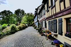 P1020298c - Idyllic place (JB Fotofan) Tags: lumix frankfurt strasse haus panasonic idyll baum höchst fz1000