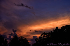 Burning Sky (travelphotographer2003) Tags: morning usa color beauty clouds sunrise solitude westvirginia serenity serene majestic freshness stormclouds refreshment appalachianmountains firstlight purity tranquilscene alleghenymountains beautyinnature webstercounty mountainsunrise