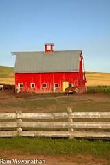 Palouse Barn Portrait (ramviswanathan) Tags: landscape photos wheatfields palouse steptoe