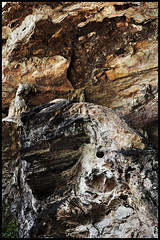 Cave wall (elenaleong) Tags: texture facade waterfall malaysia designs cave walls ipoh rockformations perak naturalformations limestonecave templecave guakekloktong