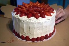 Ellen's Cake (jjldickinson) Tags: nikond3300 100d3300 nikon1855mmf3556gvriiafsdxnikkor promaster52mmdigitalhdprotectionfilter wrigley cooking baking food dessert cake icing fruit strawberry longbeach