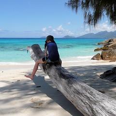 Mahé, Seychelles (pom.angers) Tags: panasonicdmctz3 2008 february mahé seychelles indianocean africa baielazare beach 100