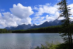 Herbert Lake (Patricia Henschen) Tags: afternoon clouds cloudy boreal forest lake lac herbert banff banffnationalpark nationalpark parkscanada parks parcs mountains mountain rockymountains rockies rocky northern canadian canada canadianrockies water lakelouise alberta icefieldsparkway bowrange