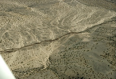 Aerial view of surface faulting associated with the 1992 Landers earthquake, San Bernardino County, California (cocoi_m) Tags: aerialphotograph aerial nature surface faulting 1992 landers earthquake sanbernardinocounty california geology geomorphology rupture emersonfault desert mojavedesert