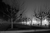 A Foggy Night in Charleston 2017-13 (King_of_Games) Tags: charleston chs southcarolina sc longexposure fog foggy night waterfrontpark