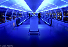 Terminal Tubes (Greg Adams Photography) Tags: manchester uk unitedkingdom greatbritain england tube terminal airport blue silhouette silhouettes walkway walking people travellers travel windows hhsc2000 fall 2016