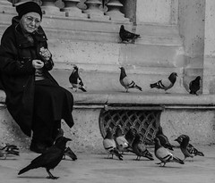 (C-47) Tags: animals portraits paris people birds animal woman old beautiful crow face blackwhite black white bw