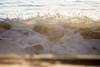 Foam Alight (haddartist) Tags: ocean oceanside oceanfront coast coastal beach sand surf wave swell break breaking shorebreak beachbreak lip splash spray water drops foam foamy morning light backlight translucent blur bokeh virginiabeach virginia