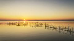 Puesta de sol en la Albufera de Valencia (canonixus1) Tags: albufera valencia atardecer sunset puestadesol cañas artesdepesca redes canonixus1 canon6d canon1740 sol sun