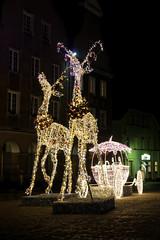 Dekoracja świąteczna (jacekbia) Tags: europa polska poland warmia olsztyn święta christmas renifery oświetlenie outdoor canon 1100d