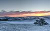winter sunrise (poach01) Tags: sunset winterlandscape snow hills orangesunrise hawick winterscene winter glow